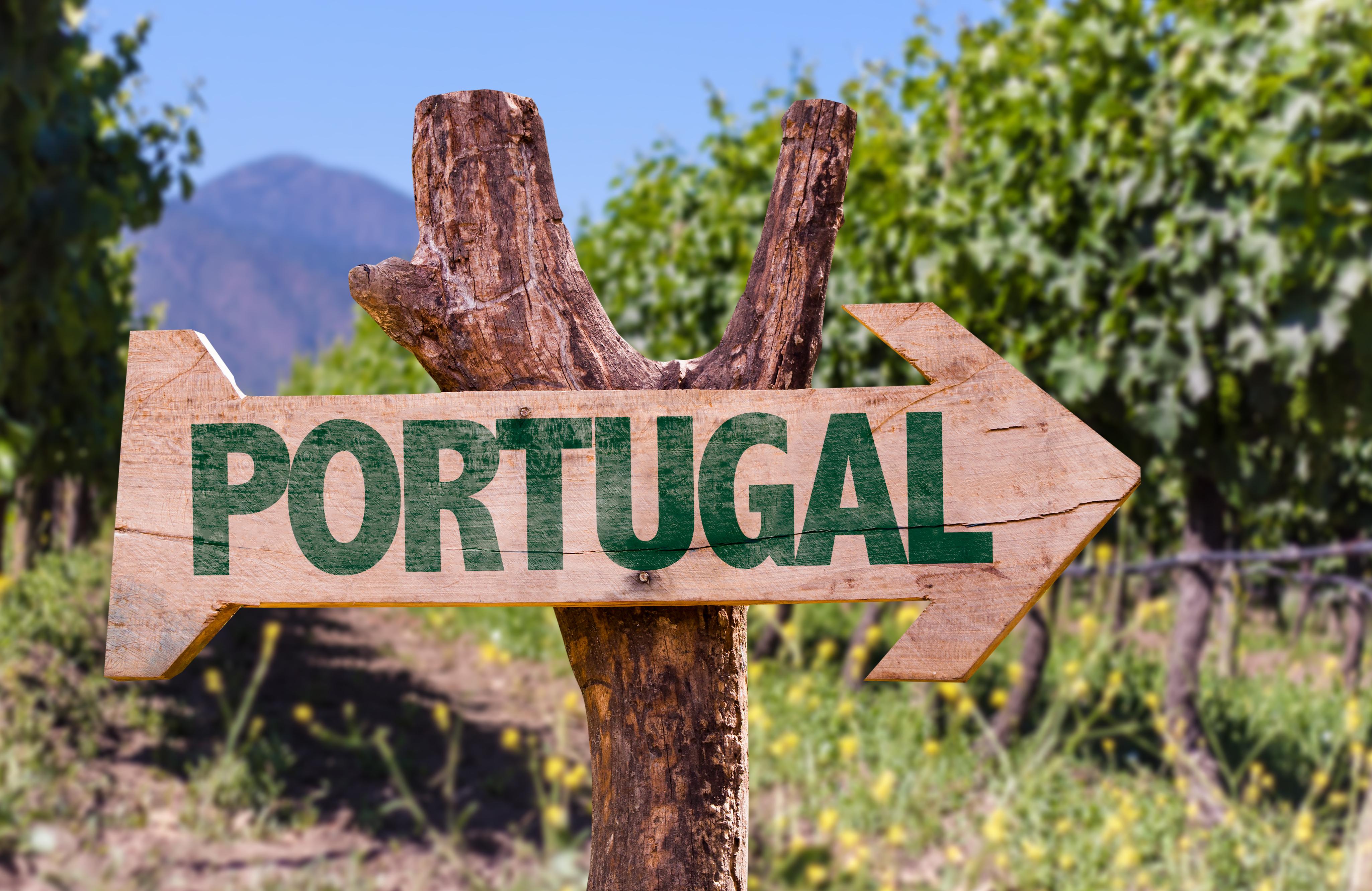 Rotas para conhecer os melhores Vinhos portugueses