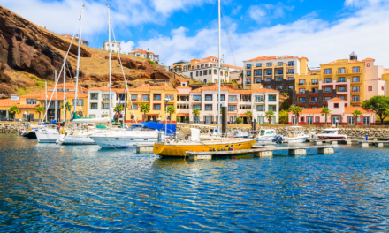 Por que a Ilha da Madeira atrai tanto os Brasileiros?